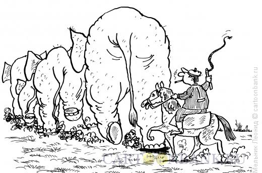 Карикатура: Пастух, Мельник Леонид