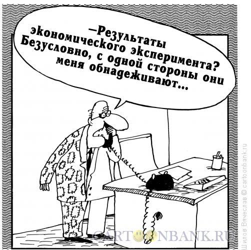Карикатура: Экономический эксперимент, Шилов Вячеслав