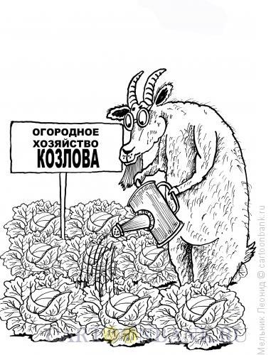Карикатура: Козел в огороде, Мельник Леонид