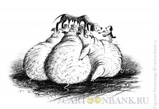 Карикатура: Инстинкты и любовь, Сергеев Александр