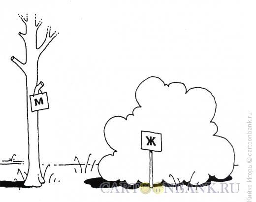Карикатура: Такие правила, Кийко Игорь