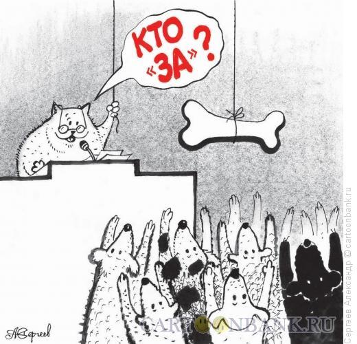 Карикатура: Голосование, Сергеев Александр
