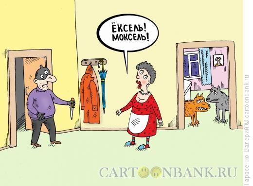 Карикатура: Неудачное ограбление, Тарасенко Валерий