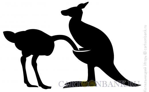 Карикатура: страус и кенгуру, Копельницкий Игорь
