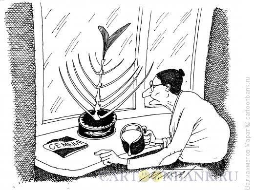 Карикатура: Цветок в банке, Валиахметов Марат