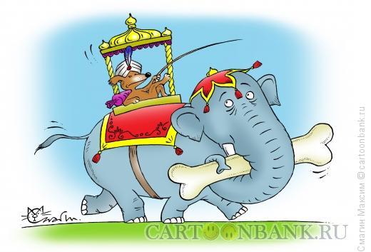 Карикатура: Моська на слоне, Смагин Максим
