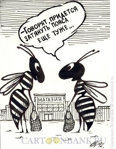 Карикатура: Разговор о кризисе, Семеренко Владимир