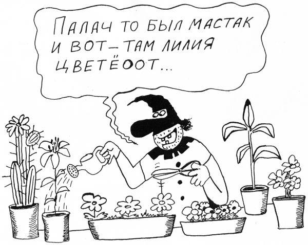 Карикатура: Там лилии цветут, Петров Александр