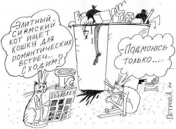Карикатура: Коты и кошки, Петров Александр