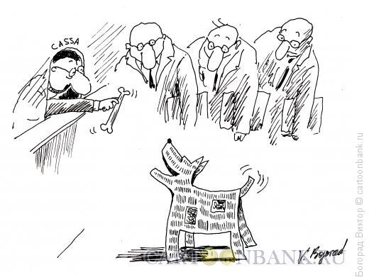 Карикатура: Шавка, Богорад Виктор