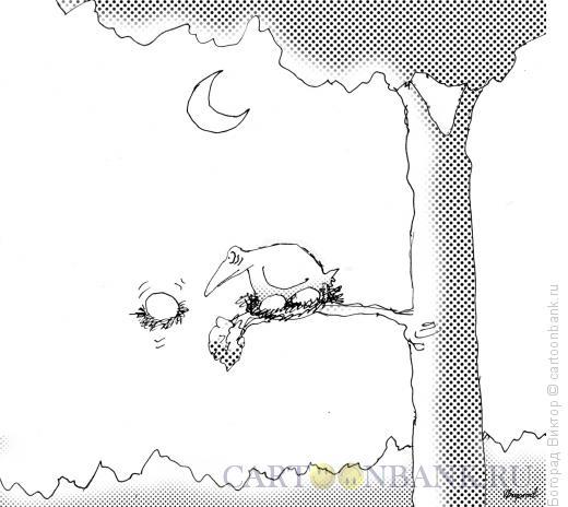 Карикатура: Вундеркинд, Богорад Виктор