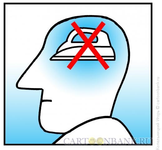 Карикатура: утюг вместо мозгов, Копельницкий Игорь