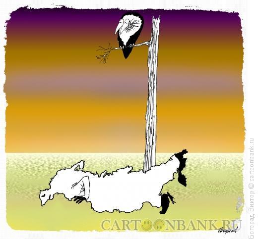 Карикатура: В пустыне, Богорад Виктор