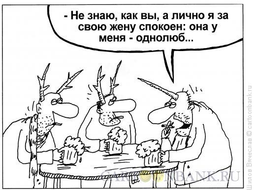 Карикатура: Однолюб, Шилов Вячеслав