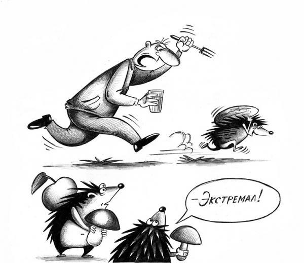 Карикатура: Экстремал, Сергей Корсун