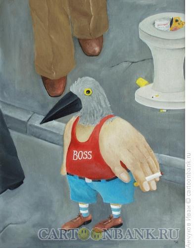 Карикатура: птицы на асфальте, Анчуков Иван