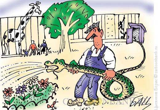 Карикатура: Прикинулся шлангом, Цыганков Борис