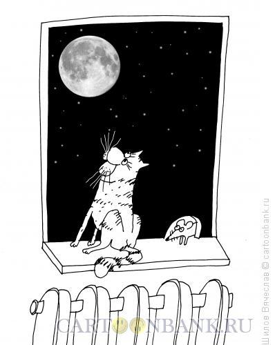 Карикатура: Норка, Шилов Вячеслав
