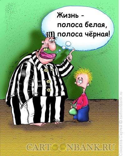Карикатура: зебра, Соколов Сергей