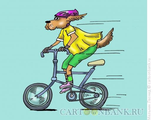 Карикатура: Собака- велосипедист, Мельник Леонид