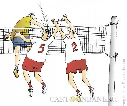 Карикатура: волейбол, Анчуков �ван
