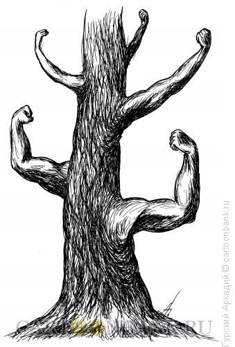 Карикатура: дерево, Гурский Аркадий