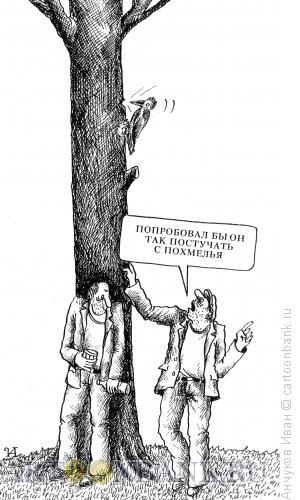 Карикатура: дятел, Анчуков Иван