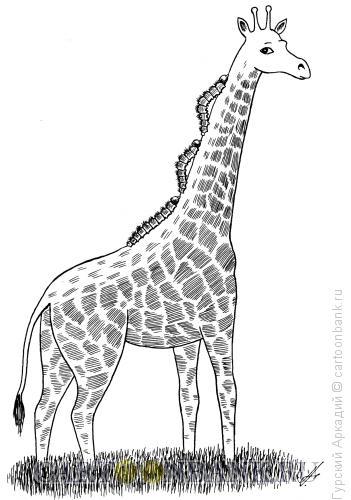 Карикатура: жираф с гусеницами, Гурский Аркадий