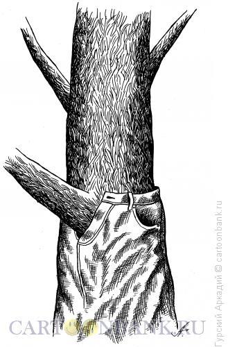 Карикатура: дерево в джинсах, Гурский Аркадий