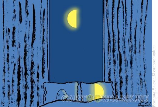 Карикатура: Ночная пара, Богорад Виктор