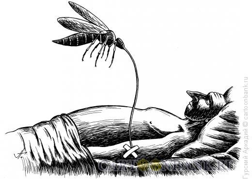 Карикатура: комар-капельница, Гурский Аркадий