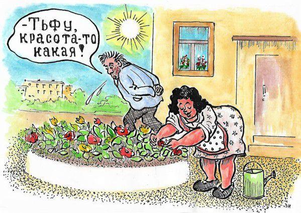 Карикатура: Красота-то какая!, Зеркаль Николай Фомич