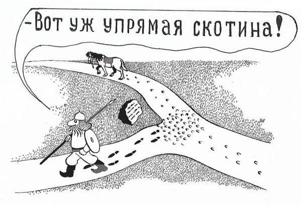 Карикатура: Не сошлись во мнениях, Зеркаль Николай Фомич