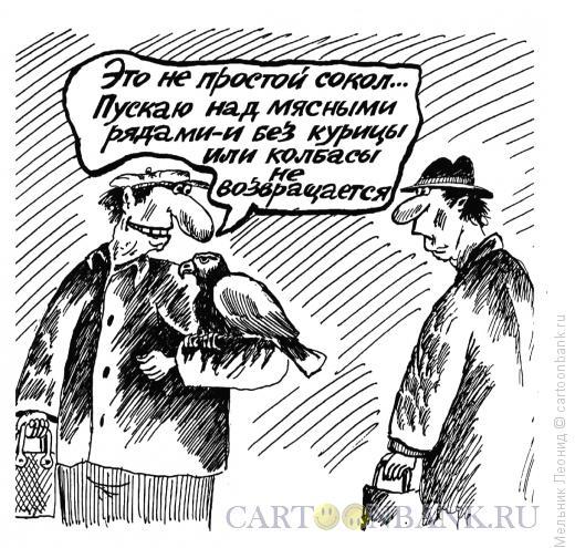 Карикатура: Соколик, Мельник Леонид