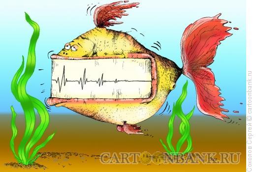 Карикатура: рыба жизни, Соколов Сергей