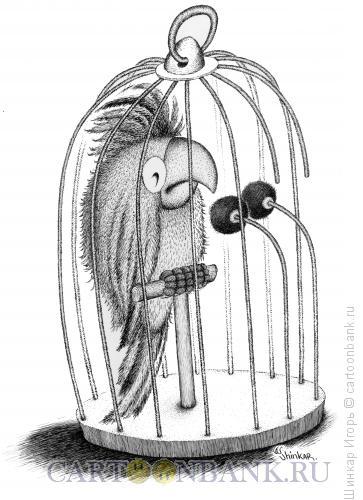 Карикатура: Депутат, Шинкар Игорь