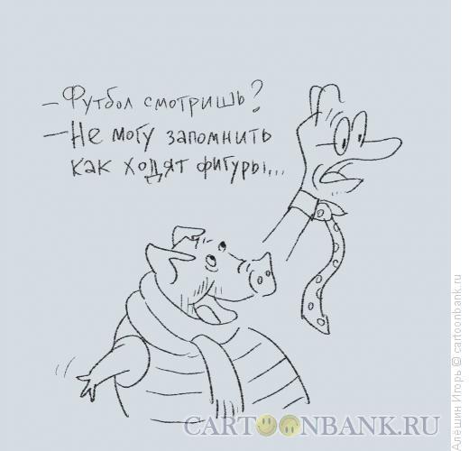 Карикатура: не люблю футбол, Алёшин Игорь