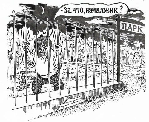 Карикатура: За что, начальник?, Зеркаль Николай Фомич