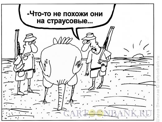 Карикатура: Страусовые яйца, Шилов Вячеслав