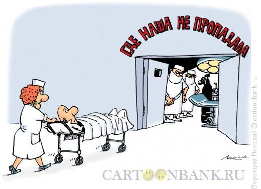 Карикатура: Где наша не пропадала, Воронцов Николай