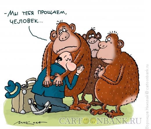 Карикатура: Человек и животные, Воронцов Николай