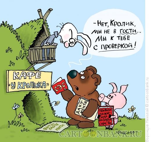 Карикатура: Проверка, Воронцов Николай
