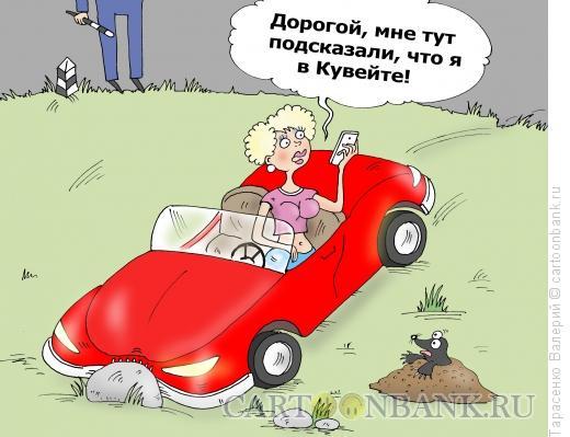 Карикатура: Кювет, Тарасенко Валерий
