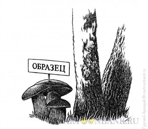 Карикатура: грибы, Гурский Аркадий