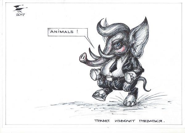 Карикатура: Трамп изволит гневаться !, Юрий Косарев
