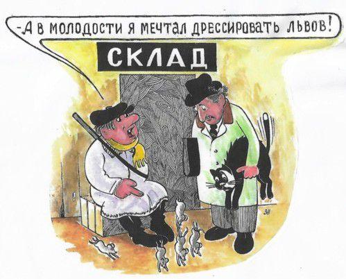 Карикатура: Несбывшаяся мечта, Зеркаль Николай Фомич