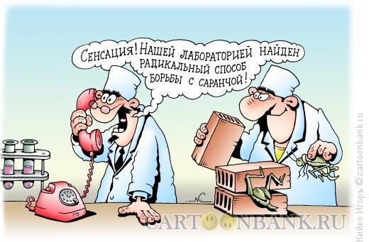 Карикатура: Борьба с саранчой, Кийко Игорь