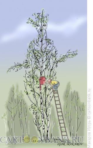 Карикатура: скворечник, Макаров Игорь