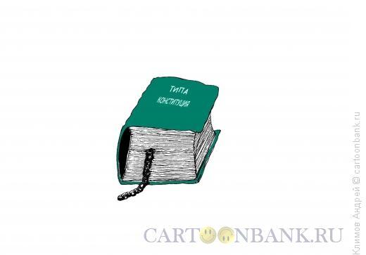 Карикатура: Тип конституции, Климов Андрей