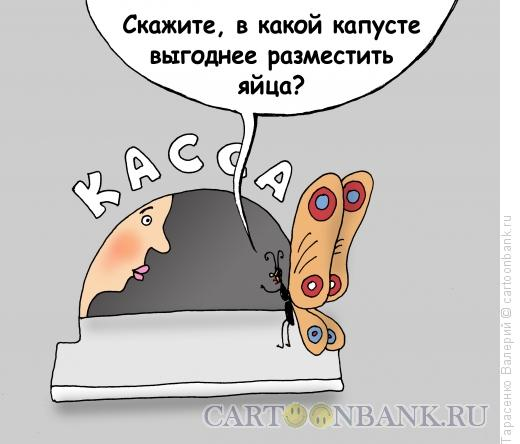 Карикатура: Капустница, Тарасенко Валерий
